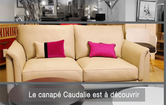view larger image canape duvivier caudalie - Canape Duvivier