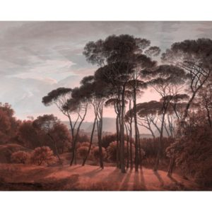 Lé Papiers de Ninon, Panoramique Ombrelli