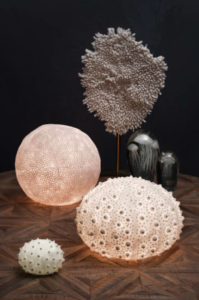 Lampes oursin et corail Chehoma